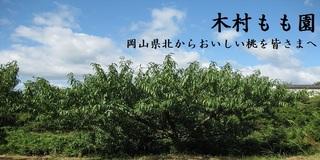 木村もも園のホームページへ!
